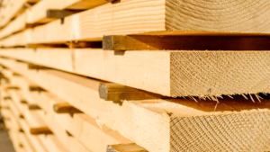 Welcome To Timber Industry